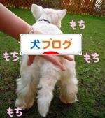 banner_20090714220832.jpg