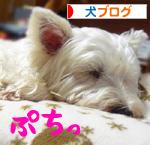 banner_20090723215329.jpg