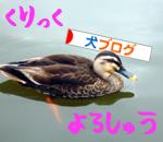 banner_20090809223820.jpg