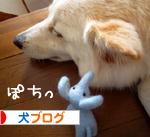 banner_20090820223412.jpg