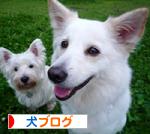banner_20090922223643.jpg