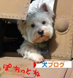 banner_20091027000643.jpg