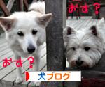 banner_20091109214013.jpg