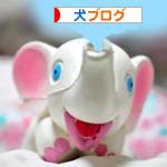 banner_20091206223637.jpg