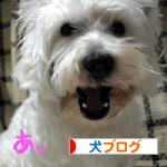 banner_20100204003216.jpg