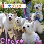 banner_20100526000127.jpg