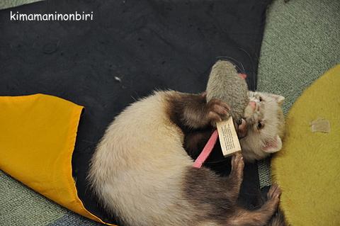 ネズミ大好き~