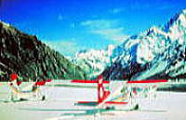 ski-plane1.jpg