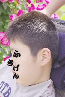 conv0001_20090520223653.jpg