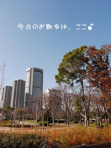 conv0027_20081216002616.jpg
