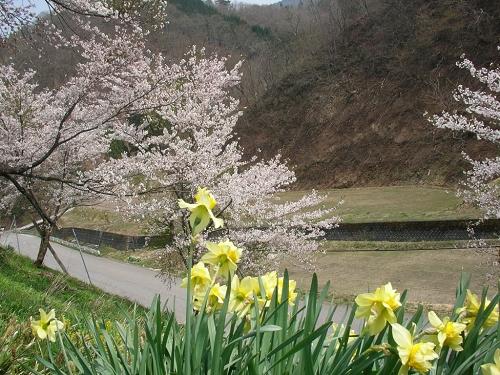 2010年村廻り (1)