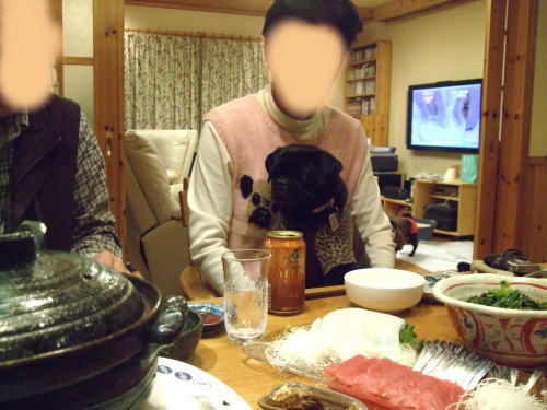 2010_01170035.jpg