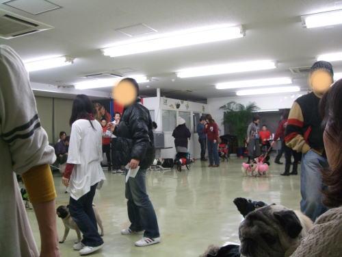 2010_01310016.jpg
