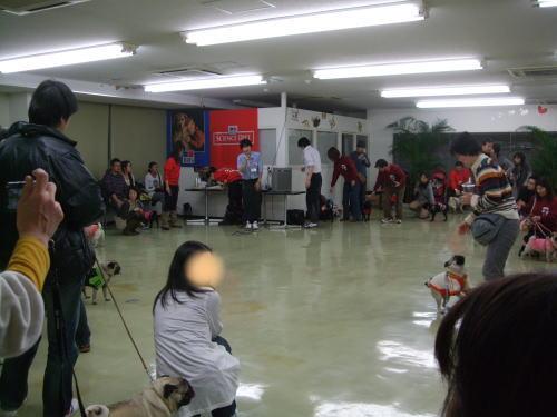 2010_01310020.jpg