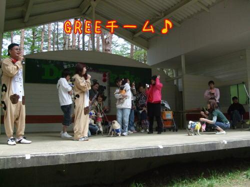 2010b02.jpg