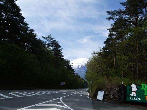 2010t01.jpg