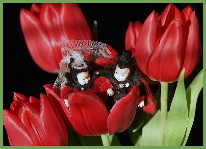ladybugs5.jpg