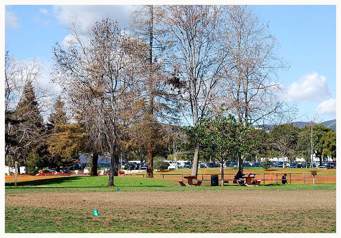 park212-41.jpg