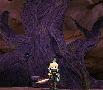 実際にある巨木