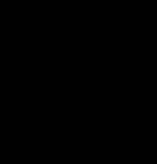 ゾロアーク線画