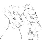 2009/04/28 動物