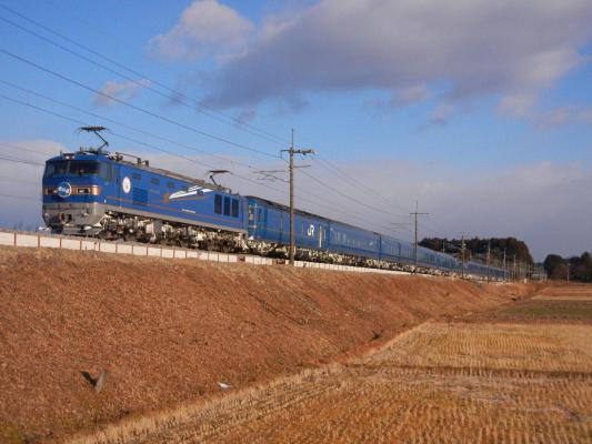 DSCN3519.jpg