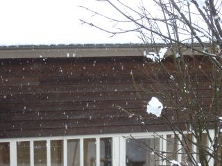 降り続ける雪・・・