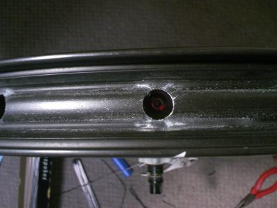 TS3E0635_convert_20090521234652.jpg
