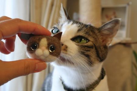 猫まつり1