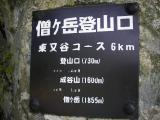 IMGP6525.jpg