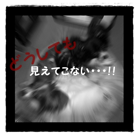 09121005_20091215081246.jpg