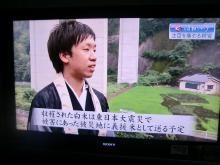 TV親鸞展7