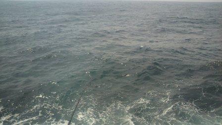 2011.5.19 小阿治の釣り座