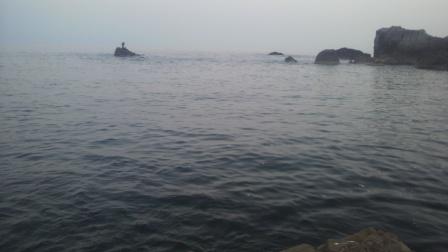 2011.6.19 黄色い島からカモメのポコン