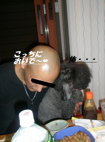 019_convert_20090322024506.jpg
