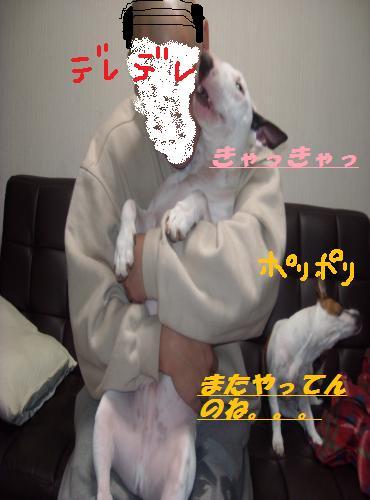 DSCN0340_convert_20090310050945.jpg