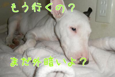 x_2WxZGV.jpg