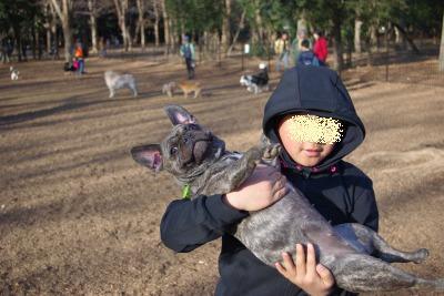 yoyogi110064.jpg