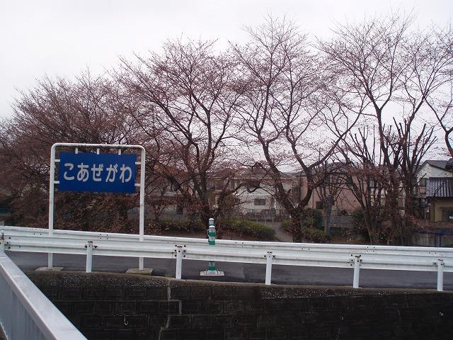 P3290039.jpg