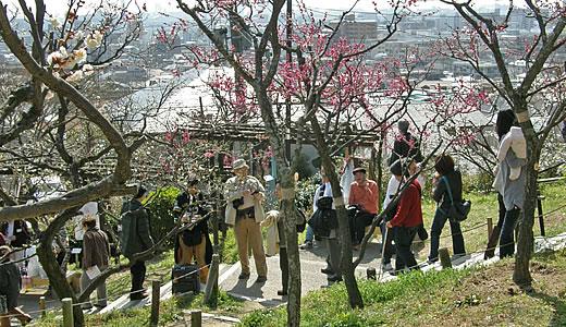 摂津岡本梅まつり2011-1