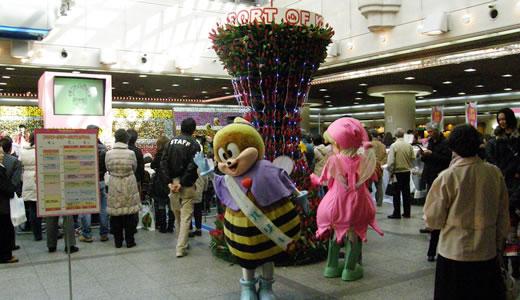 神戸花物語2011-1