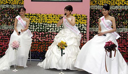 神戸花物語2011-3