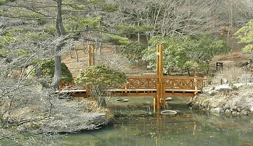 六甲高山植物園2011オープニング-1