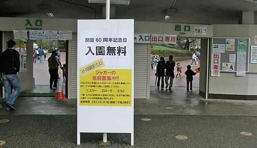 王子動物園無料開放日-1