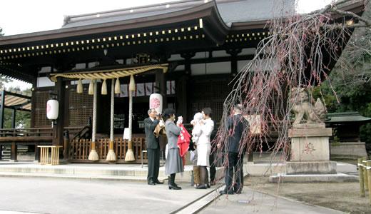御影花びらまつり2012-1