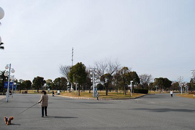 奥には芝生広場がありました。