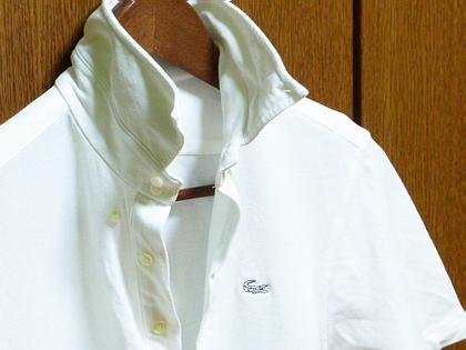 白いポロシャツ。