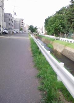 さくらちゃんの道