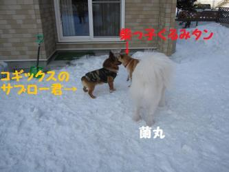 2009 2 28 hirokami1