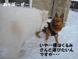 2009 2 28 hirokami2